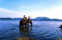 balade a dos d'elephant au lac Lak, buon me thuot