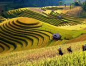 vietnam tours: Secrets of High Tonkin