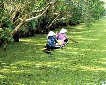 voyages vietnam authentique, can tho