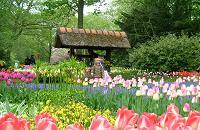 voyages vietnam, visite des jardins des fleurs a da lat