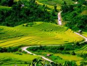 Legendary Trail of Vietnam