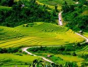 Special travel vietnam: Legendary trail of Vietnam